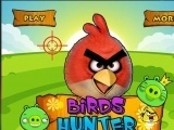 Angry Birds Hunter Hacked