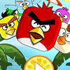ANGRY BUMPER BIRD