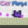 CAT NINJA MAGIC ADVENTURE