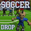 SOCCER DROP GAME